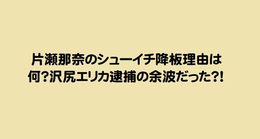片瀬那奈のシューイチ降板理由は何?沢尻エリカ逮捕の余波だった?!