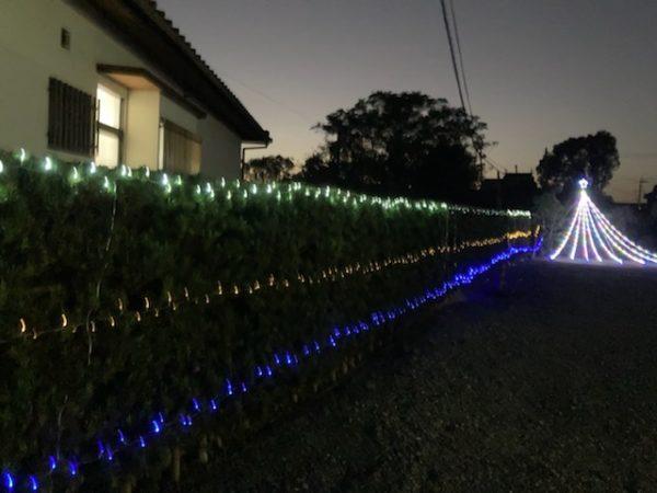 生垣に設置したストレート球の夜間点灯写真